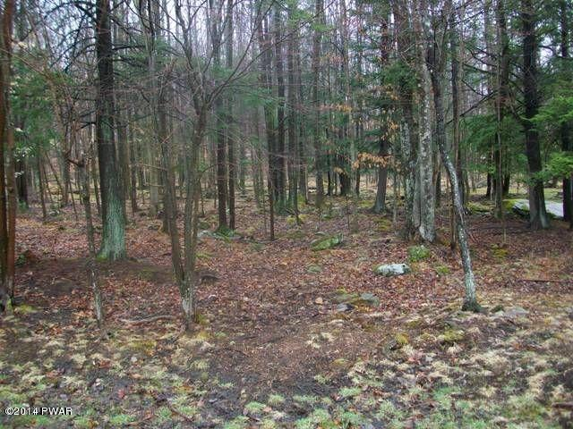 142 Underwood Lane, Lake Ariel PA-Wooded Lot for Sale in The Hideout