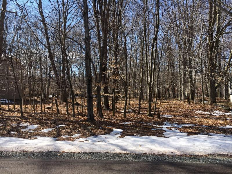 2856 Boulder Road-Level Wooded Lot in The Hideout