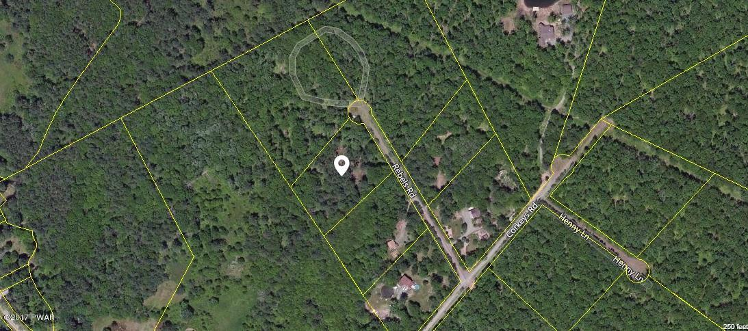 NEW LISTING!! Build Your Dream Home on This Level Lot that Consists of Nearly 3 Acres! Ideally located for those seeking peace, quiet, and nature. No community, no dues. Close to skiing, golfing, hunting, and fishing on the Lackawaxen and Delaware Rivers.