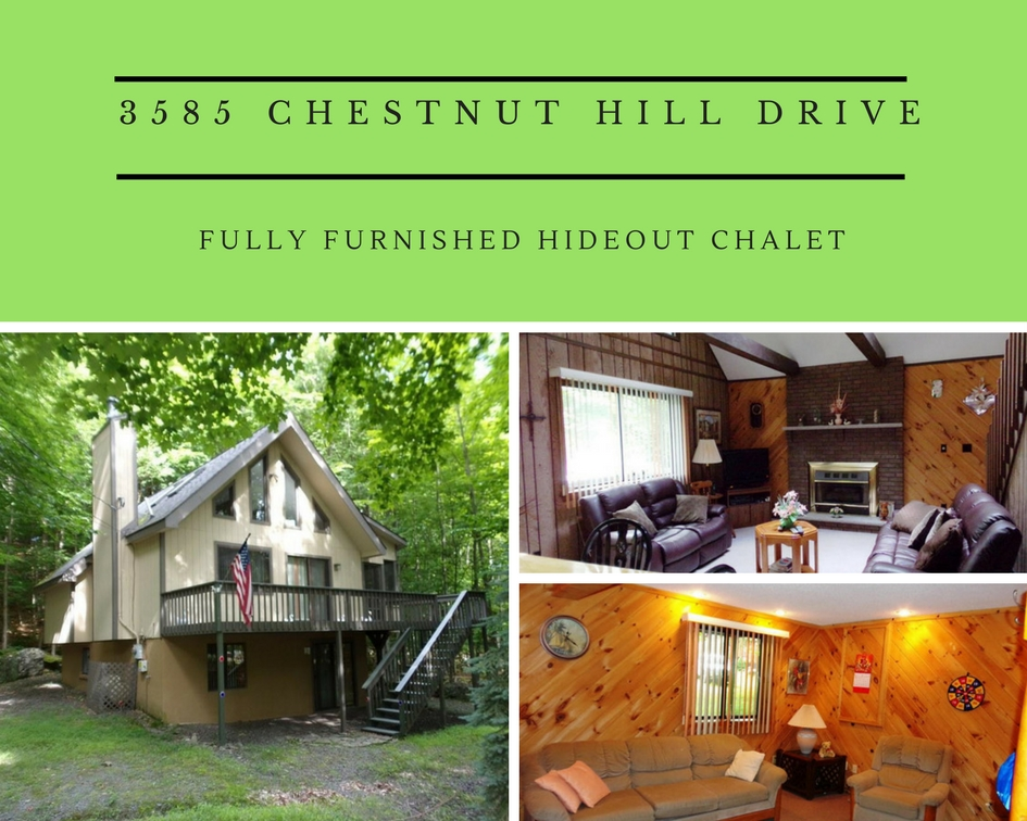 3585 Chestnut Hill Drive: Fully Furnished Hideout Chalet