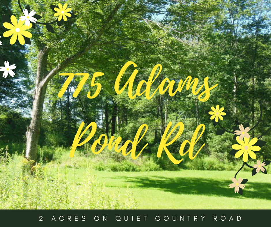 775 Adams Pond Road, Beach Lake PA: 2 Acres on Quiet Country Road