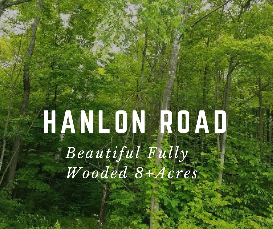 Hanlon Road, Lake Ariel PA: Beautiful Fully Wooded 8+ Acres
