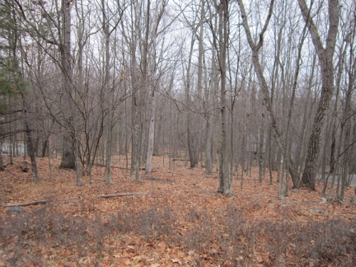 NEW LISTING! Build Your Dream Home On this 1/2 Acre Lot in Masthope Mountain! This Gently Sloping Lot Would Be Perfect for a Home with a Rear Walkout Basement. Within Walking Distance to the Lake, White Sand Beach, Boat Launch, & Beach Restaurant! For mor