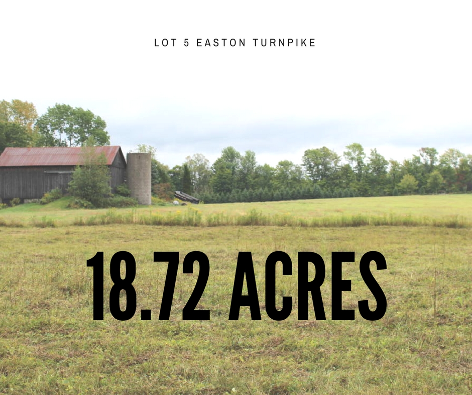 Lot 5 Easton Turnpike - 18.72 Acres to Build or Hunt