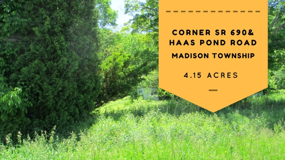 Corner SR 690 & Haas Pond Road: 4+ Acre Corner Lot in Madison Township