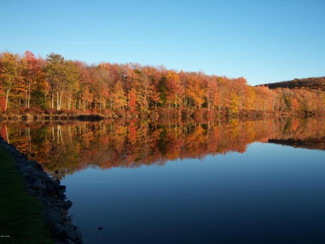 Cobbs Lake Preserve Lake