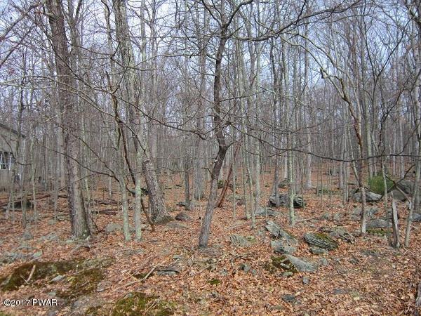 NEW LISTING!! Build Your Dream Home in Masthope Mountain Community! This .62 Acre Lot Requires No Well & No Septic Thanks to the Central Water and Sewer. Enjoy All of the Amenities Masthope Has to Offer When You Purchase This Lot and Build Your Dream Geta