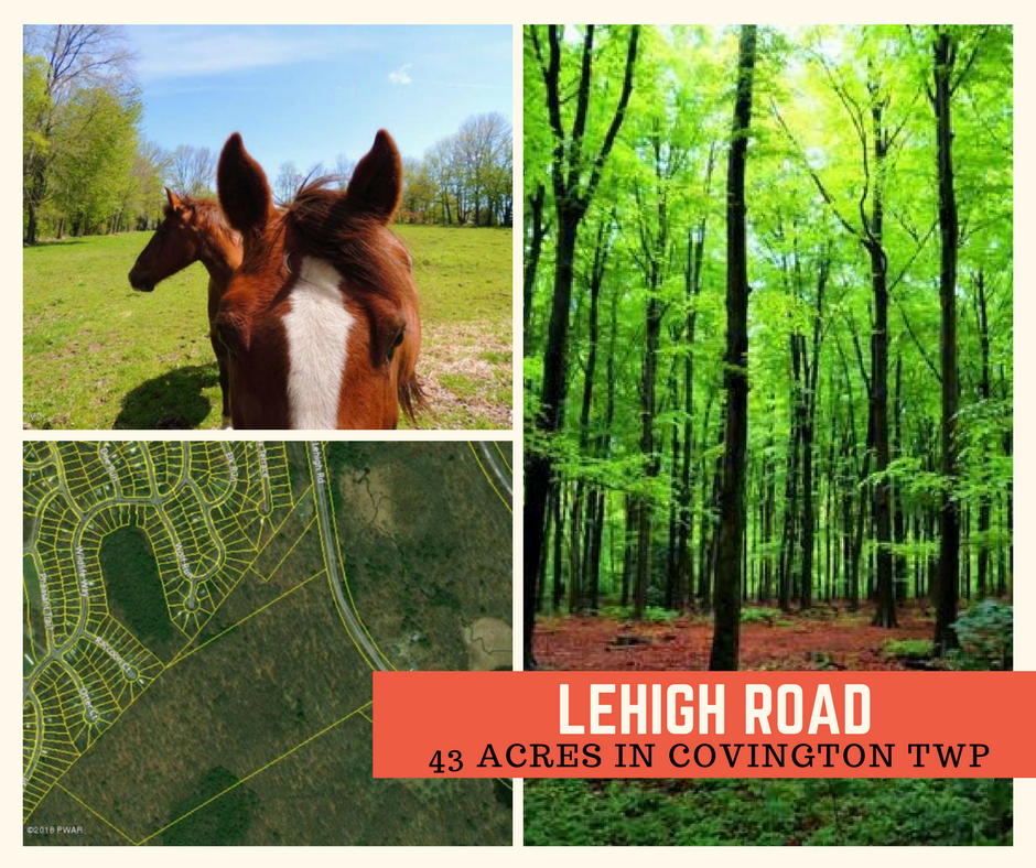 Lehigh Road: 43 Acres in Covington Twp