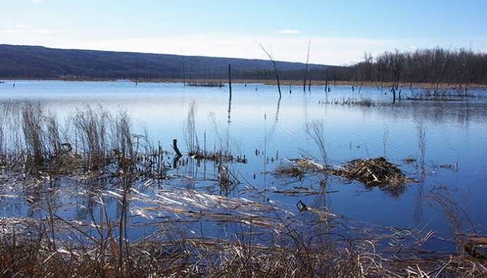Let the Spring Fishing Begin on Conesus Lake!