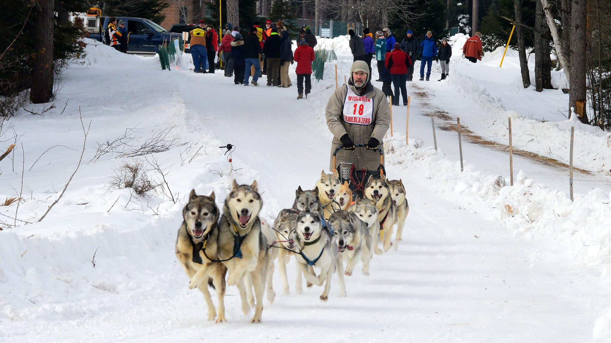 37th Annual Three Bear Sled Dog Races in Land O'Lakes