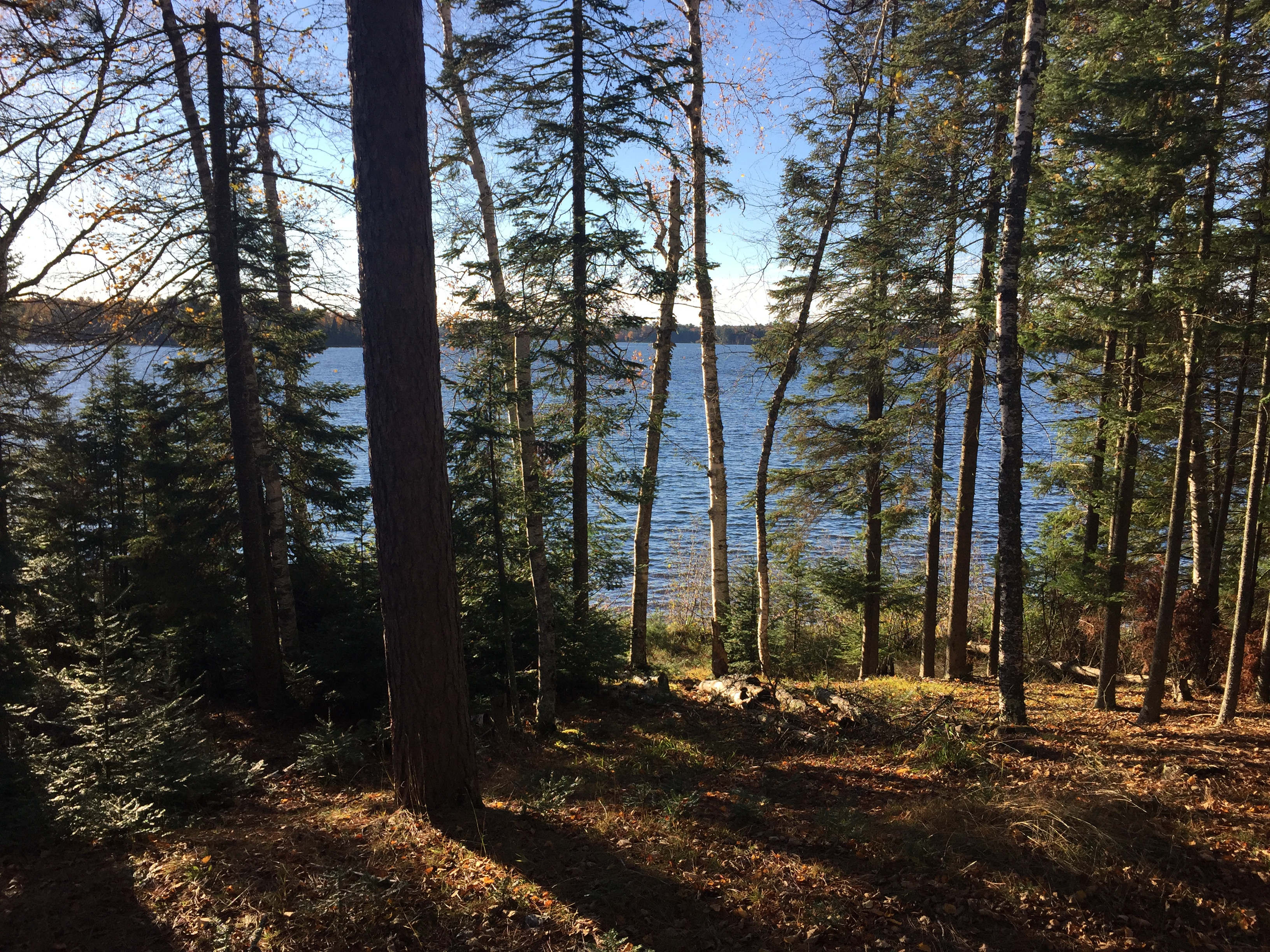 JUST SOLD | Plum Lake Parcel with Sunset Views