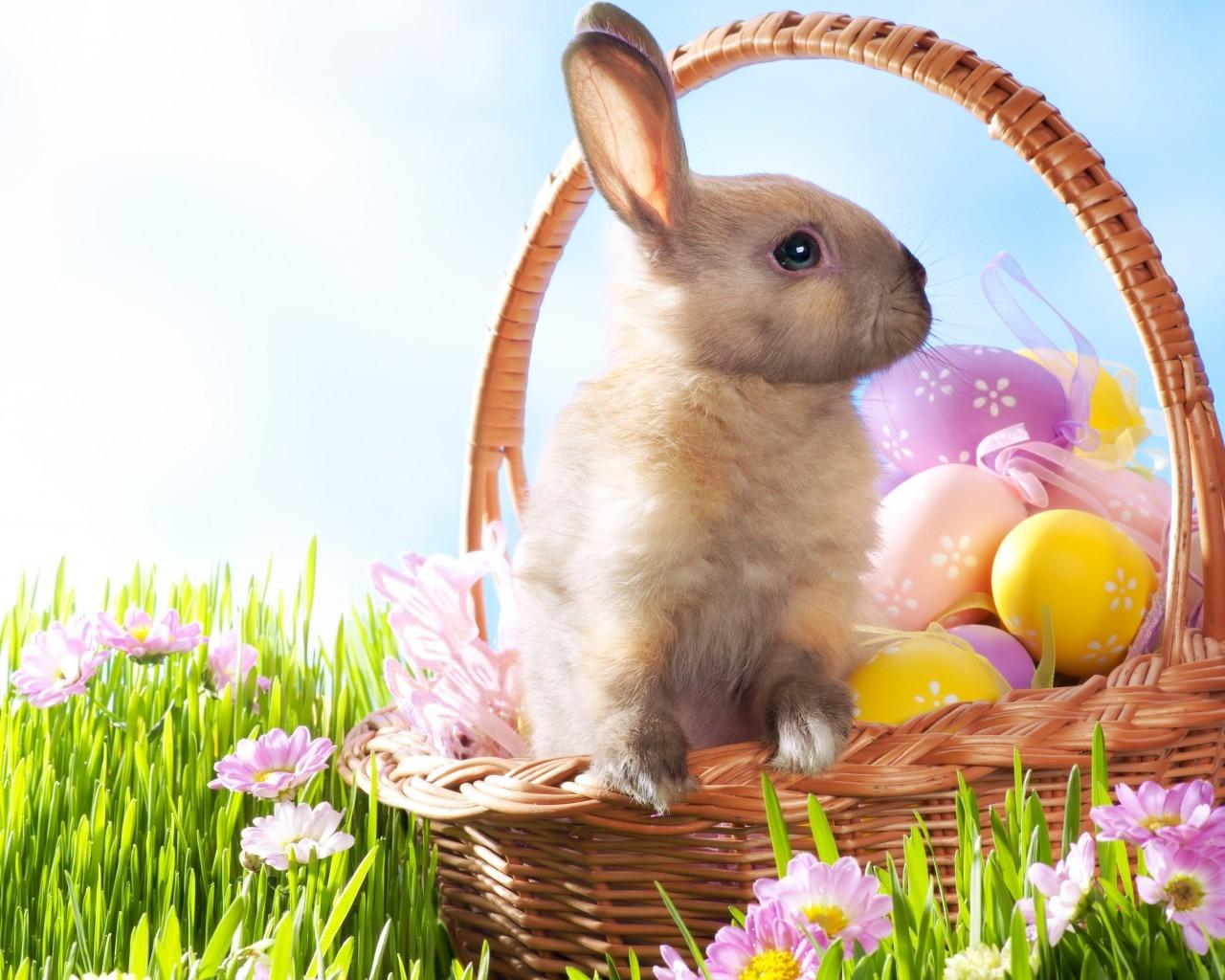 Why do Easter dates move around and why the Easter Bunny?