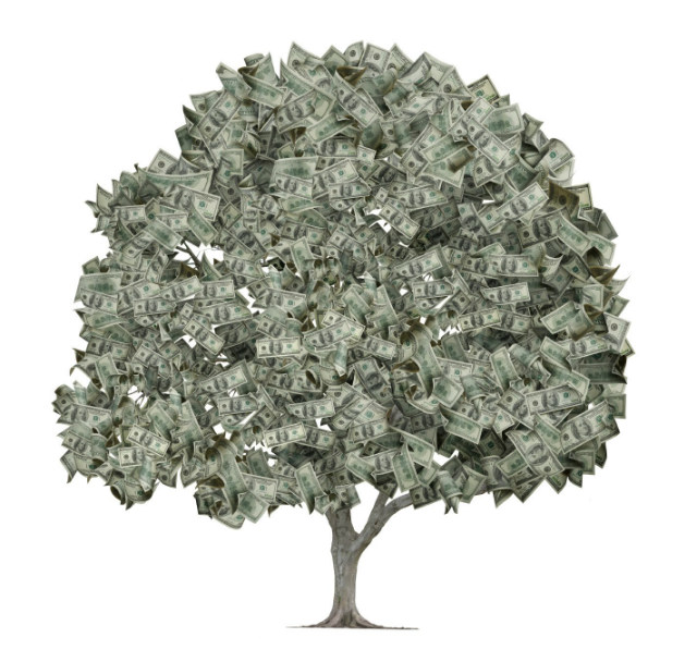 Money Tree - First Time Home Buyer Grants