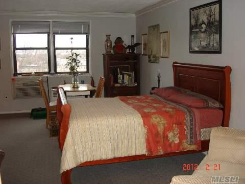 Charming, Spacious Studio Co-op For Sale in Howard Beach