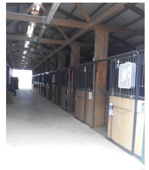 Horse Facilities For Sale at 5233 Harding Street near Prole Iowa