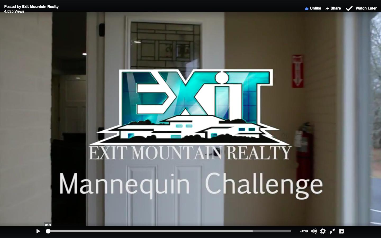 Stunning Real Estate Mannequin Challenge