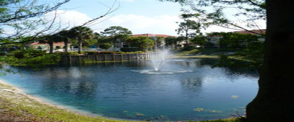 calusabay