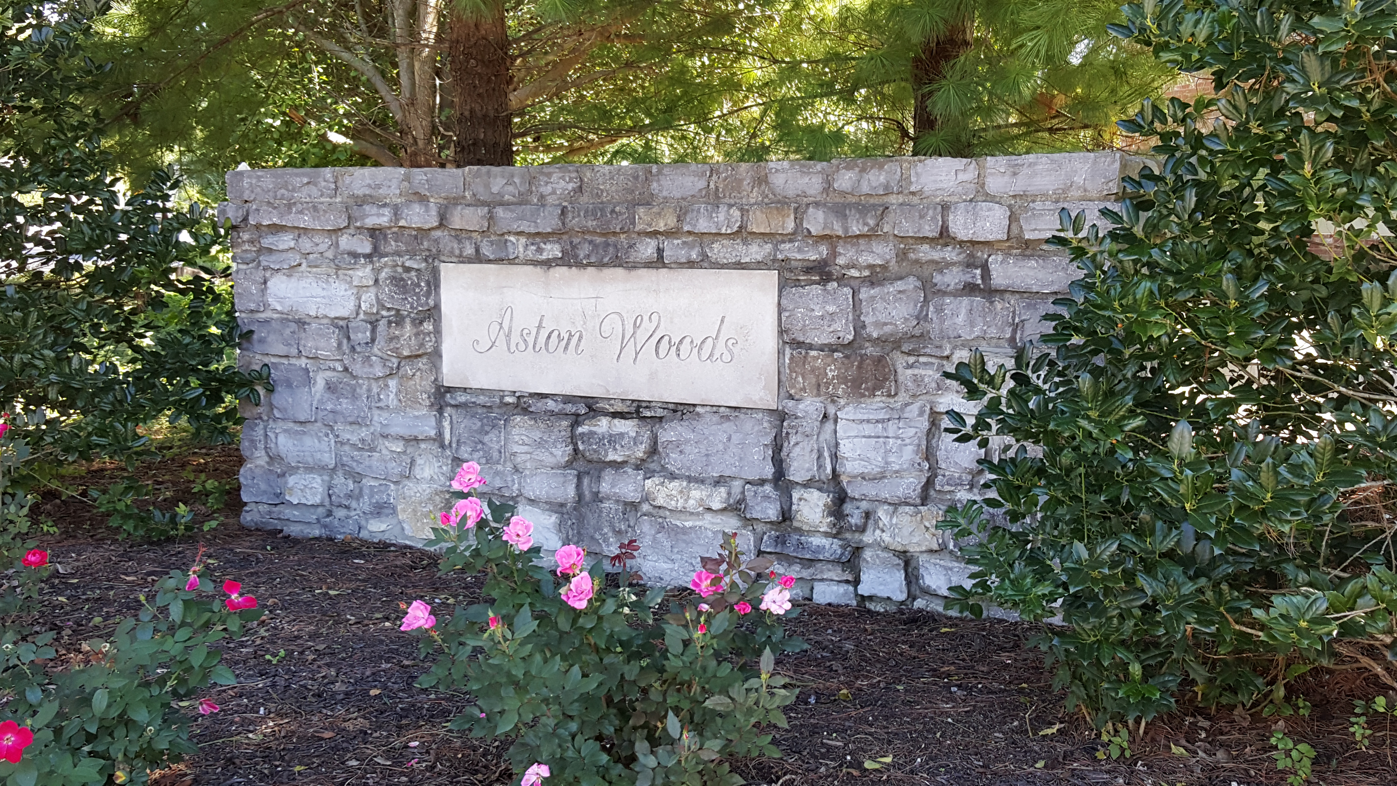 Aston Woods subdivision in Thompson's Station homes for sale