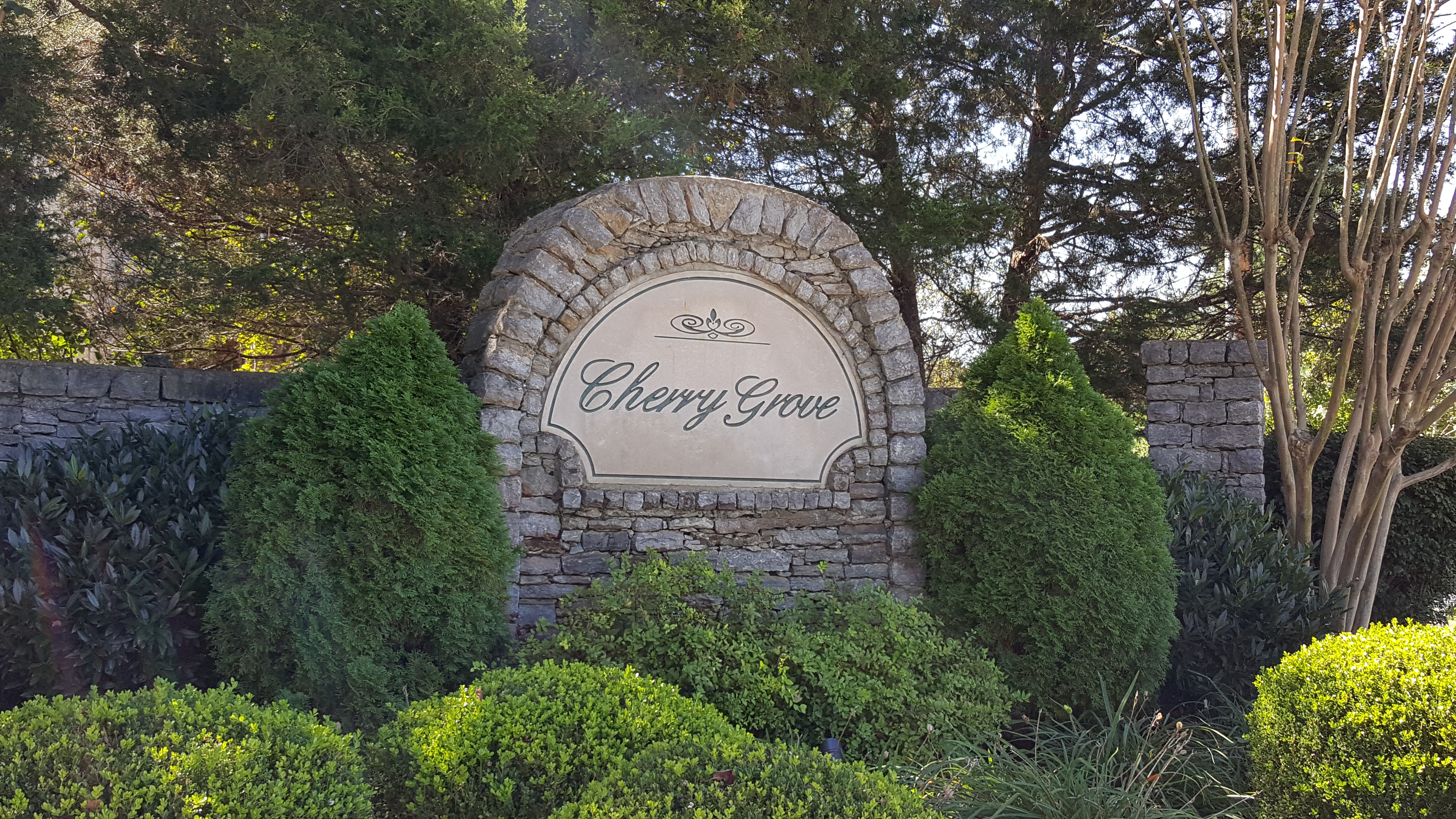 Cherry Grove Subdivision complete list of homes for sale in Spring Hill