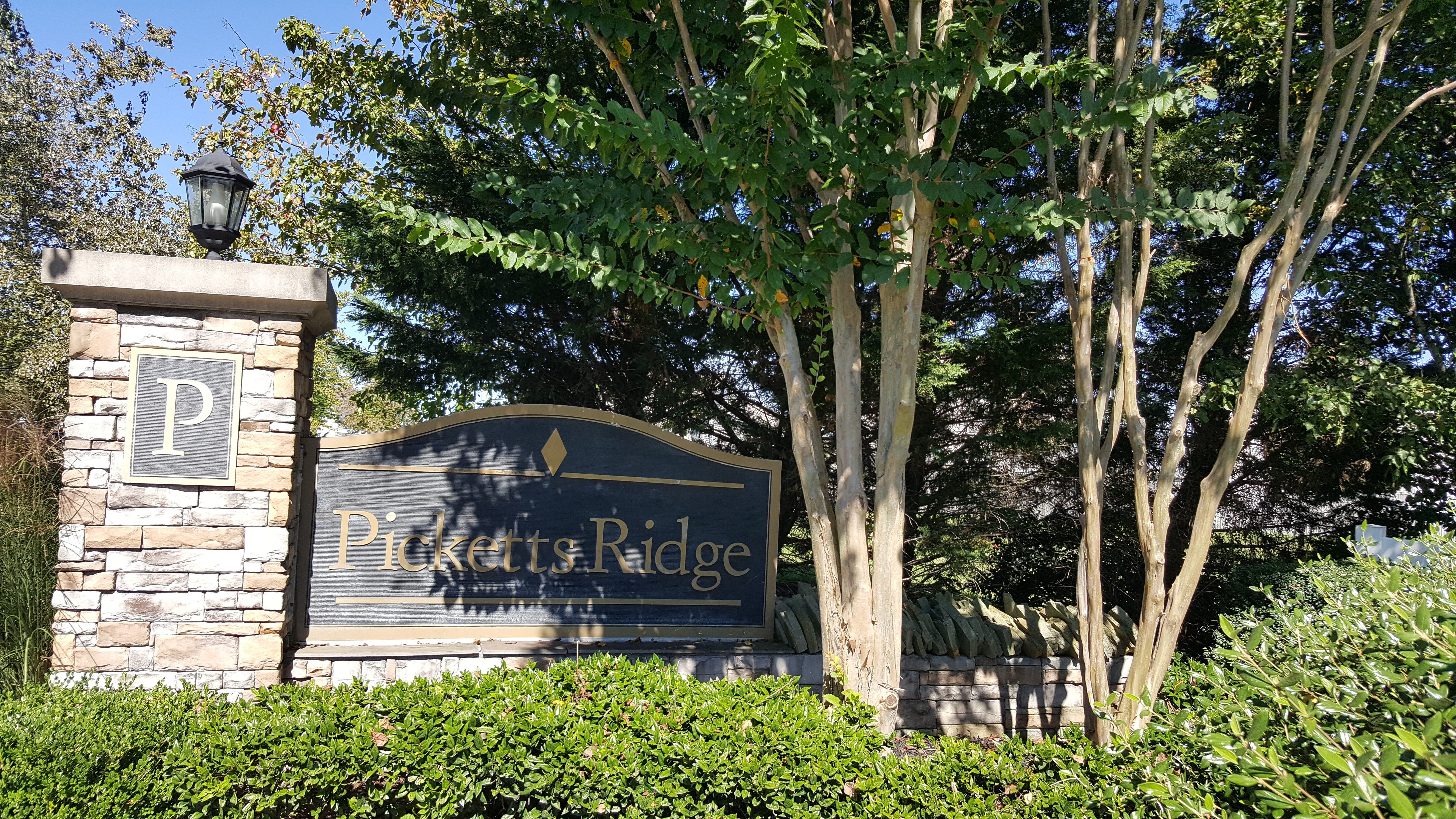 Picketts Ridge subdivision in Thompson's Station real estate for sale