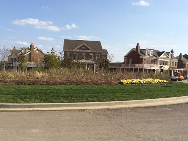 Berry Farms Subdivision Green space and roundabouts