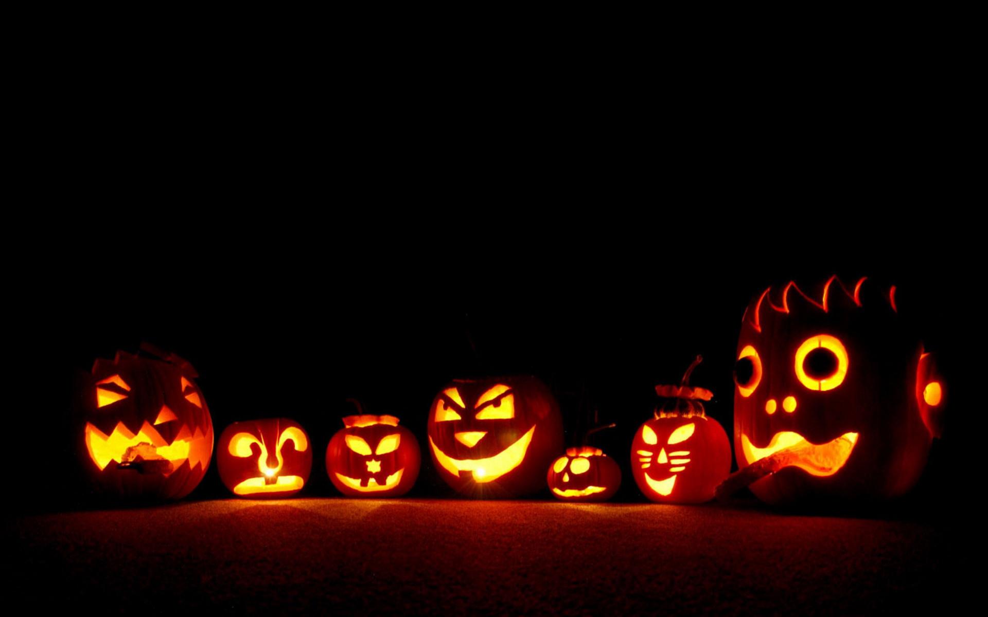 Pumpkin Patches & Harvest Markets