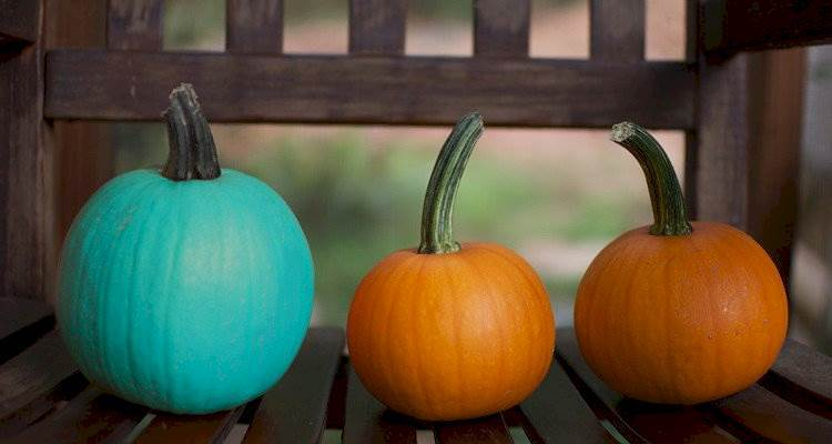 The Meaning Behind A Teal Pumpkin!